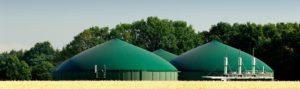 BioTrans biogasanlæg omsætter biomassen til biogas